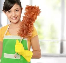 woman holding a dust cleaning
