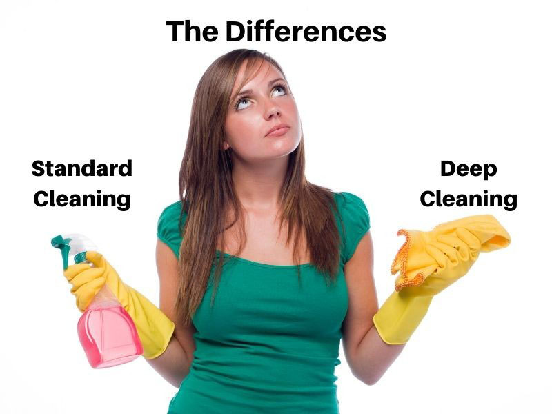 woman wonders what type of cleaning to choose